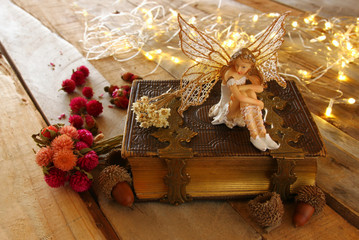 magical little fairy in the forest next to old book