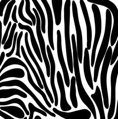 Pattern of zebra vector.