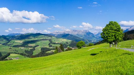 View of Emmental from Schallenberg pass, Switzerland