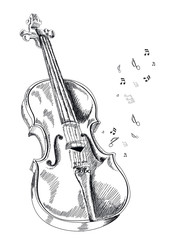 musical instrument violin on white background. Vector illustration.