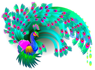 Illustration of magic peacock, vector cartoon image.