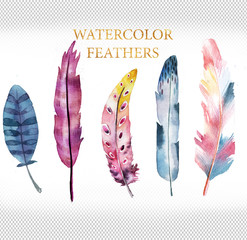 rainbow watercolor feathers collection