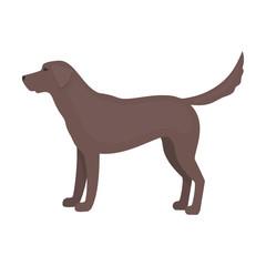 Labrador vector icon in cartoon style for web