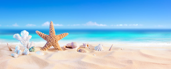 Wall Mural - Golden Sand With Seashell And Starfish - Tropical Seashore