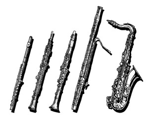 Woodwind musical instruments set