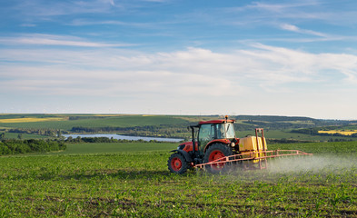 Fototapete - Farm machinery spraying insecticide to the green field, agricult