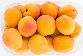 Biological apricots