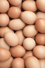 background of fresh eggs for sale at a market.