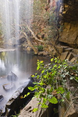 Waterfall, Deadcock Den, Mitchell River National Park, Victoria, Australia, Pacific
