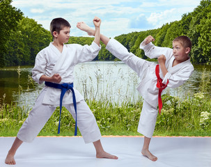 Against the background of the nature the athletes are training strikes and blocks