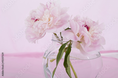 Pink Flowers In A Vase Isolated Against Pale Pink Stock Photo And
