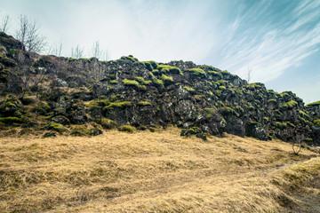 Green moss on black cliffs
