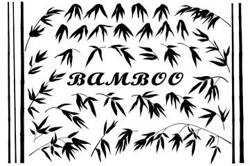 Exotic Background, Tropical Bamboo Plants Trunks, Stems, Branches and Leaves Black Silhouettes Isolated on White Background. Vector