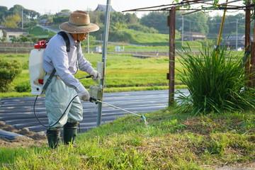 農作業 消毒をするを日本人の高齢者