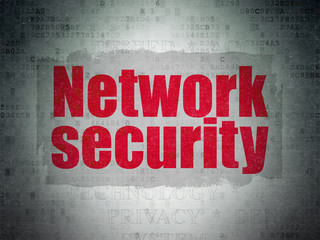 Privacy concept: Network Security on Digital Data Paper background
