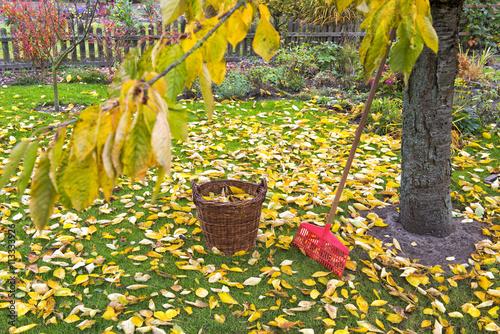 Herbst gartenarbeit stockfotos und lizenzfreie bilder auf bild 113333926 - Gartenarbeit im herbst ...