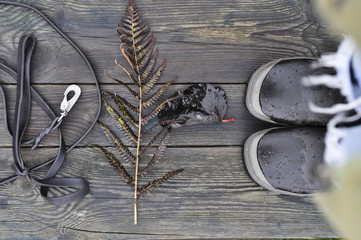 Belt, leaves and shoes on wooden planks