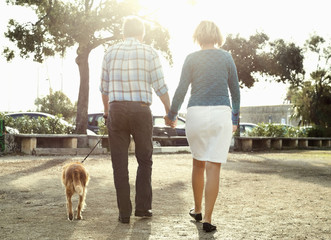 Rear view of couple walking with dog in park