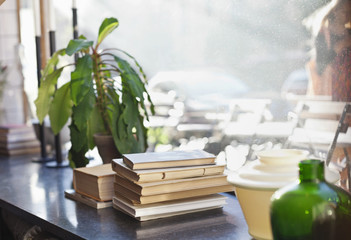 Stack of books and potted plant against glass window