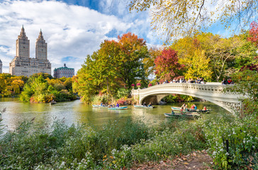 Fototapete - Beautiful foliage colors of New York Central Park