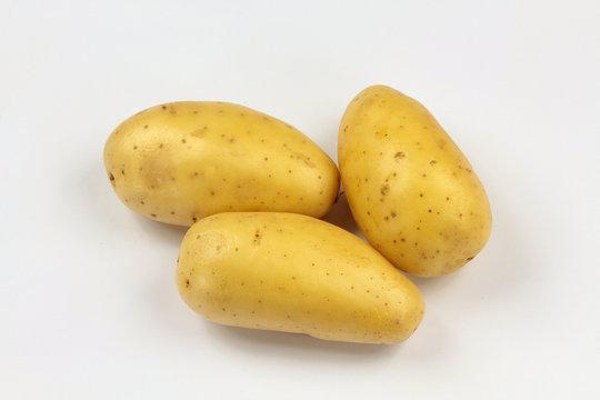 pommes de terre 13062016
