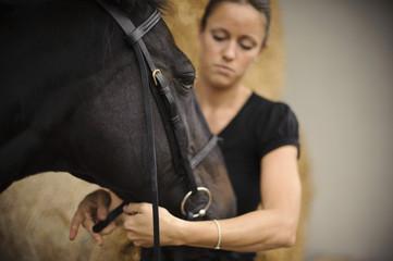 Woman adjusting horse's bridle