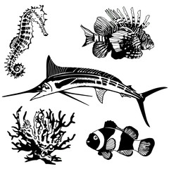 Set of sea, ocean animals, elements. Seahorse, blue marlin, clown fish, coral, lionfish. Vector.