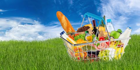 shopping basket filled with fresh tasty food on green grass isolated in front of blue sky / EInkaufskorb gefüllt mit leckeren frischen Lenbensmitteln auf grüner wiese vor blauem himmel