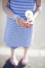 Girl holding Dandelion flower