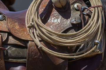 Detail of horse's saddle, with coiled rope