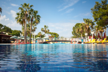 photo swimming pool, with a background of palm trees and a blue sky with a focus on water