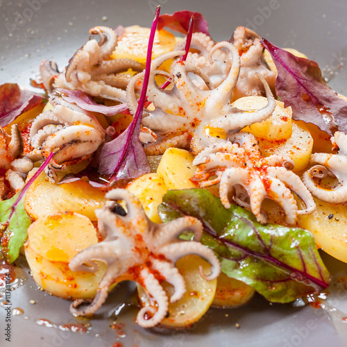 Foto: octopus with potatoes, olive oil, paprika and leaves of chard ...