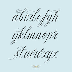 Hand drawn calligraphy alphabet