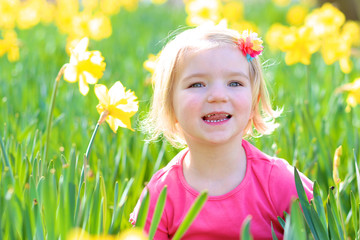 Little girl sitting in field of yellow daffodils. Cute happy toddler having fun outdoors in spring meadow.