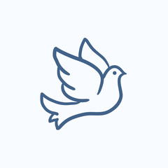 Wedding dove sketch icon.