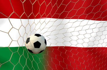 Soccer Euro 2016 ( Football ) Hungary and Austria
