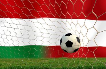 Soccer Euro 2016 ( Football ) Hungary and Austria