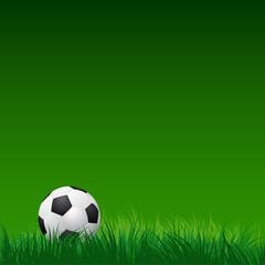 soccer ball on green grass. vector illustration EPS10