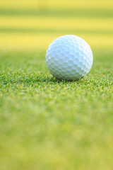 Golf ball on green grass in course