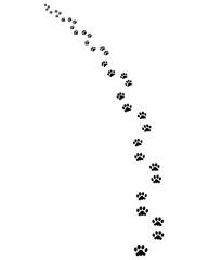 Footprints of dog, turn left, vector