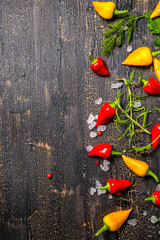 decorative spices, dry peppers, sea salt, different greenery on