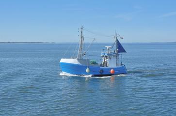 Fischkutter auf dem Schaproder Bodden vor der Insel Hiddensee,Ostsee,Mecklenburg-Vorpommern,Deutschland