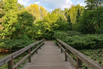 Japanese landscape, river, bridge. Summer