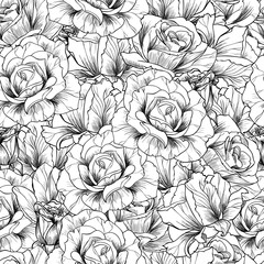 White roses vector seamless pattern