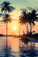 Beautiful sunset with palm trees silhouettes on a tropical beach.