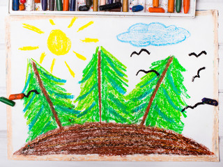 Colorful drawing: Trees on the hill