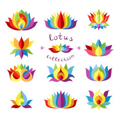 Rainbow Lotuses Collection