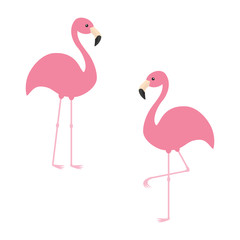 Two pink flamingo set. Exotic tropical bird. Zoo animal collection. Cute cartoon character. Decoration element. Flat design. White background. Isolated.