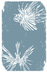 Two Distressed Hipster LionFish