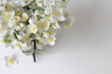 Bouquet of white jasmine flowers in a vase. Corner of frame from jasmine flowers. Floral decoration with mock-orange jasmine -Philadelphus flowers.